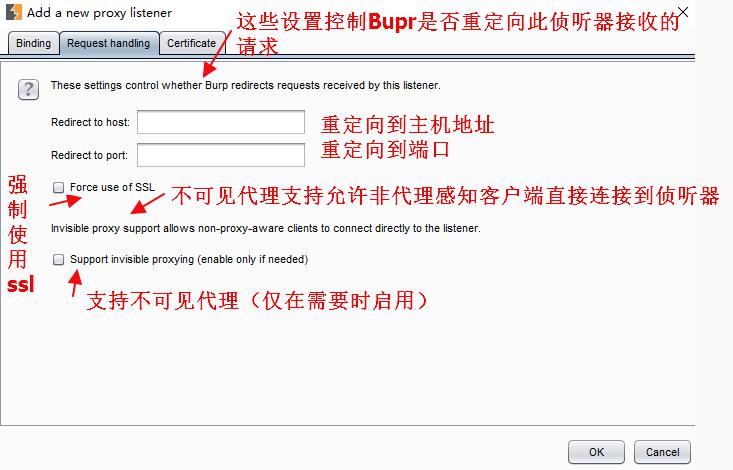 BurpSuite绯诲��涔�Proxy妯″��(浠g��妯″��)