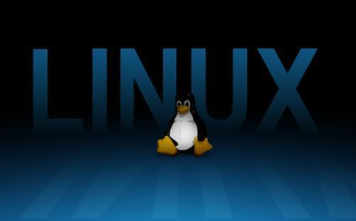 Linux��澶�涓�������PHP锛�濡�浣��ョ����淇���PHP����锛�淇���PATH�����冲����